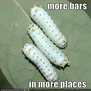 morebars