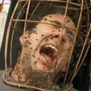 Cage in a cage