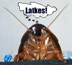 roach dreaming of latkes