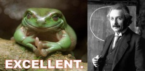 Einstein and a frog