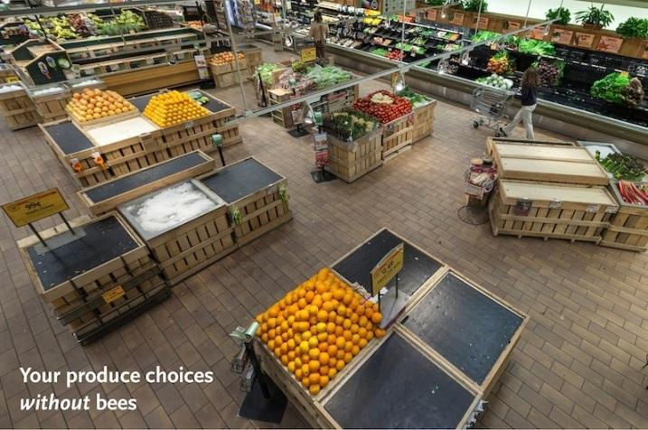 Whole Foods Produce Dept.